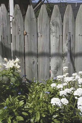 Fencing and well placed plantings can improve privacy for homeowners who desire it.